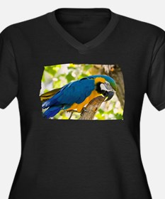 Blue & Gold Macaw Women's Plus Size V-Neck Dark T-