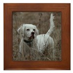 English Setter Wall Art