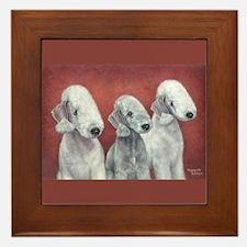 Bedlingtons Three Framed Tile