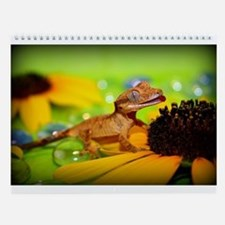 Cute Crested gecko Wall Calendar