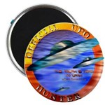 Official UFO Hunter Color Magnet
