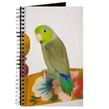 Parrotlet Journal