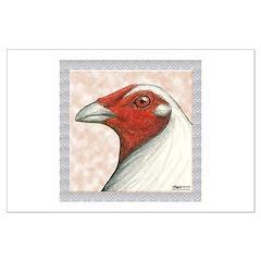 American Gamecock Posters