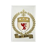 PETIT PRINCE Family Crest Rectangle Magnet (100 pa