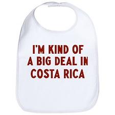 Big Deal in Costa Rica Bib