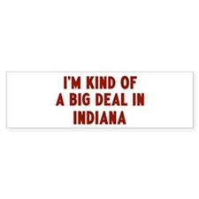 Big Deal in Indiana Bumper Bumper Sticker