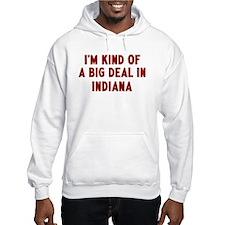 Big Deal in Indiana Hoodie