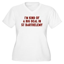 Big Deal in St Barthelemy T-Shirt