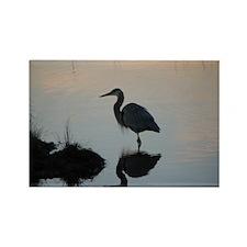 Blue Heron Sunset Rectangle Magnet