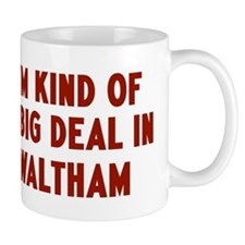 Big Deal in Waltham Mug