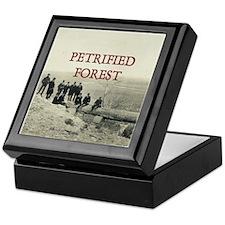 ABH Petrified Forest Keepsake Box