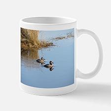 Ruddy Ducks Mug