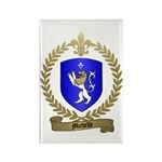 MICHELLE Family Crest Rectangle Magnet