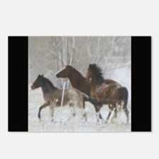 Winter Horse Play Postcards (Package of 8)