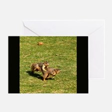 Squirrel Leapfrog Greeting Card