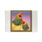 Buff Brahma Chickens Rectangle Magnet (10 pack)