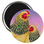 Buff Brahma Chickens Magnet