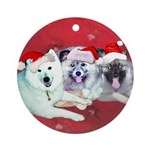 Blizz Keesha Star Ornament (Round)