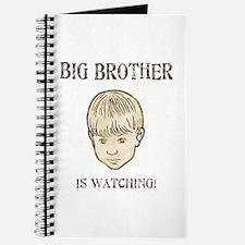 Big Brother Journal
