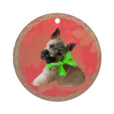 Cairn Puppy Christmas ornament