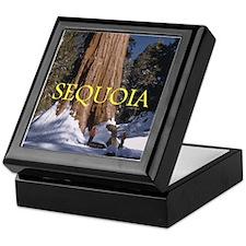 ABH Sequoia Keepsake Box