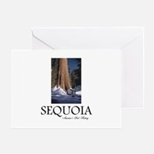 ABH Sequoia Greeting Card
