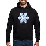 Flurry Snowflake XVII Hoodie (dark)