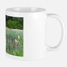 Pacific Northwest Wetland Mug