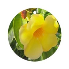 Yellow Mandevilla Ornament (Round)