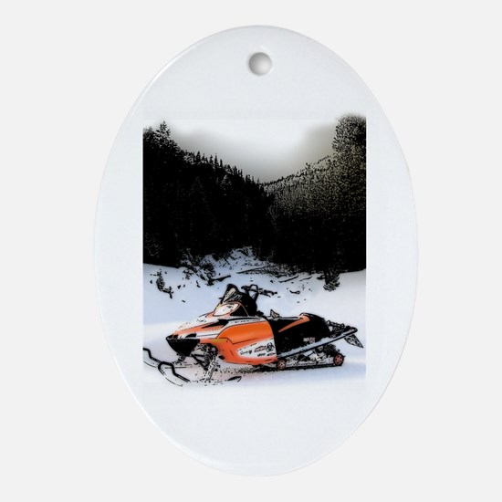 Sole Sled Oval Ornament