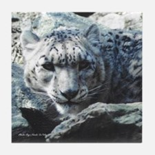 Snow Leopard 1 Tile Coaster