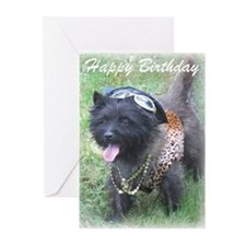 Bling Birthday Cairn Greeting Cards (Pk of 10)