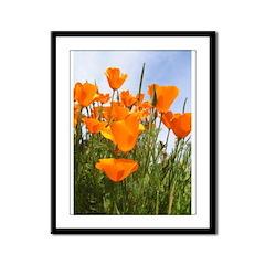 Orange California Poppies Framed Panel Print