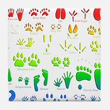 Rainbow 3D Animal Tracks Tile Coaster