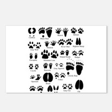 Animal Tracks Guide Postcards (Package of 8)