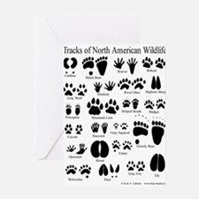 Animal Tracks Guide Greeting Card