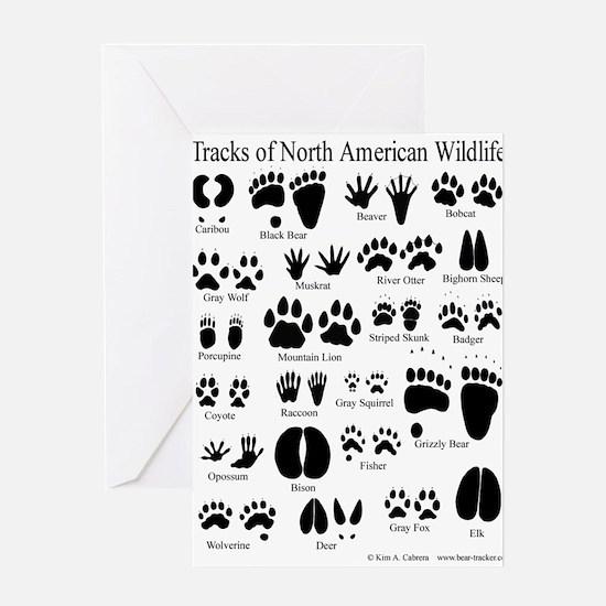 Animal Tracks Guide Greeting Card