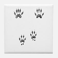 Gray Squirrel Tracks Tile Coaster