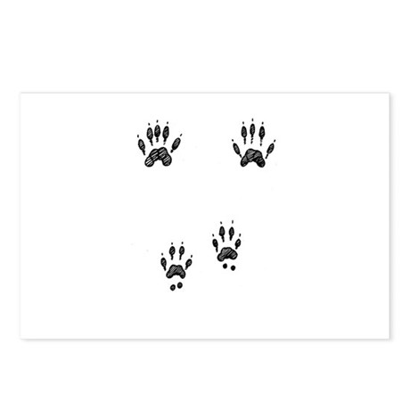 Gray Squirrel Tracks Postcards (Package of 8)