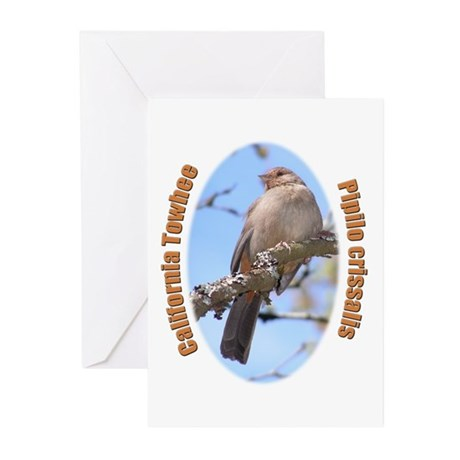 California Towhee Greeting Cards (Pk of 20)