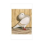 Khaki Mookee Pigeon Rectangle Sticker 50 pk)