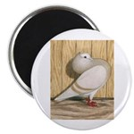 "Khaki Mookee Pigeon 2.25"" Magnet (100 pack)"