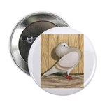 "Khaki Mookee Pigeon 2.25"" Button (100 pack)"