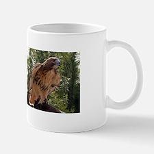 Red Tailed Hawk Ruffled Feath Mug
