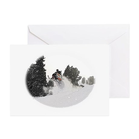 Flying Through Snow Greeting Cards (Pk of 10)