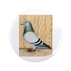 """Show Racer Pigeon 3.5"""" Button (100 pack)"""