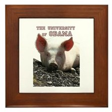 The University of Obama Zoolo Framed Tile