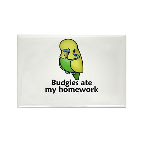 Budgies ate my homework Rectangle Magnet