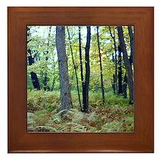 Framed Tiles featureing photo Framed Tile
