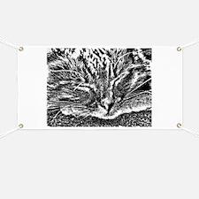 TC CAT ART Banner